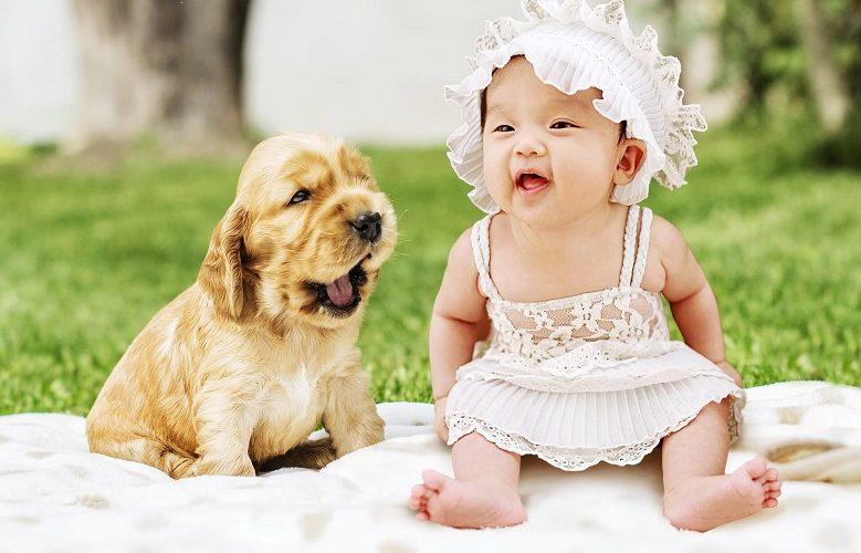 תינוקות וחיות מחמד